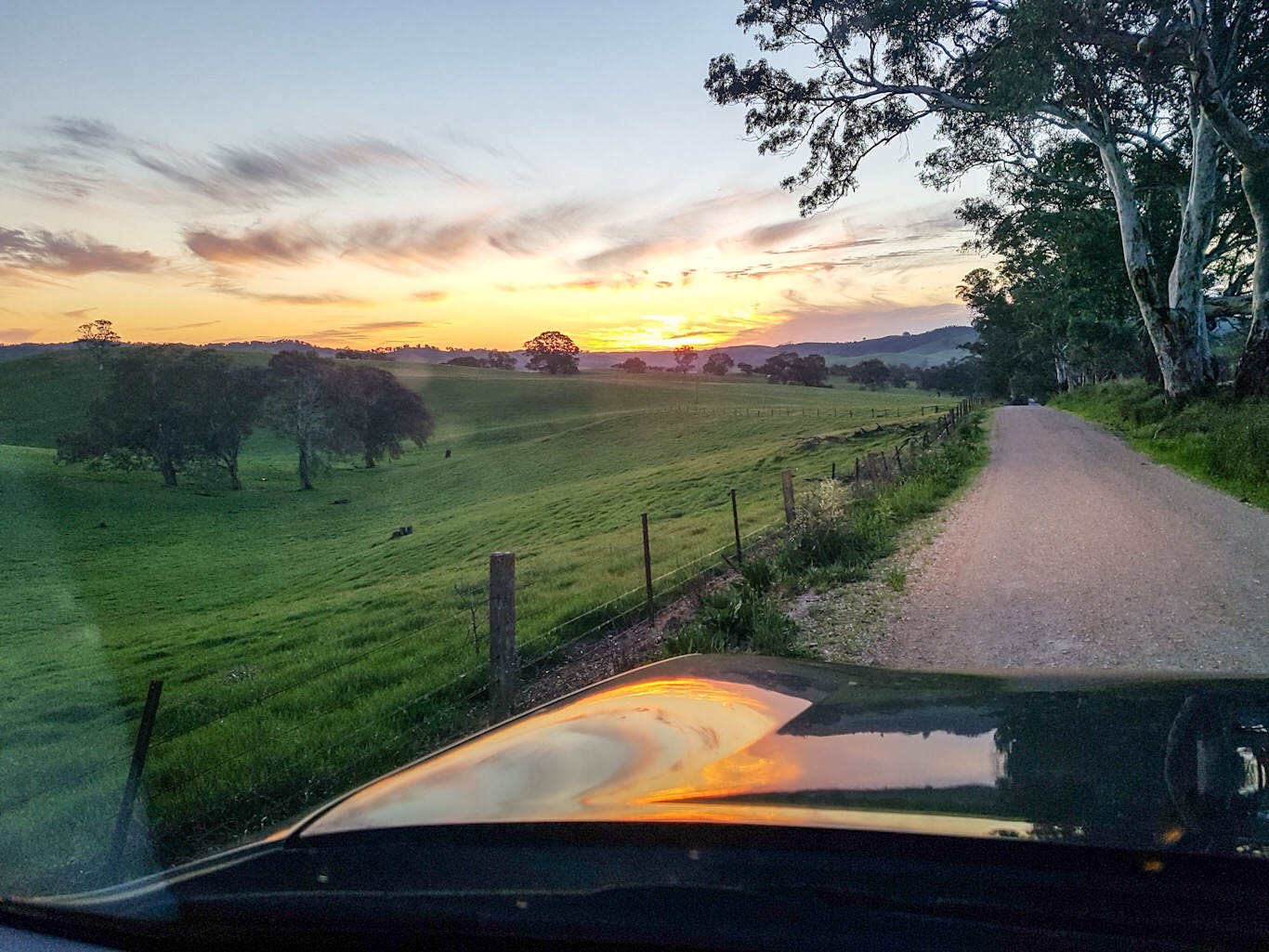 Winton Road Sunset